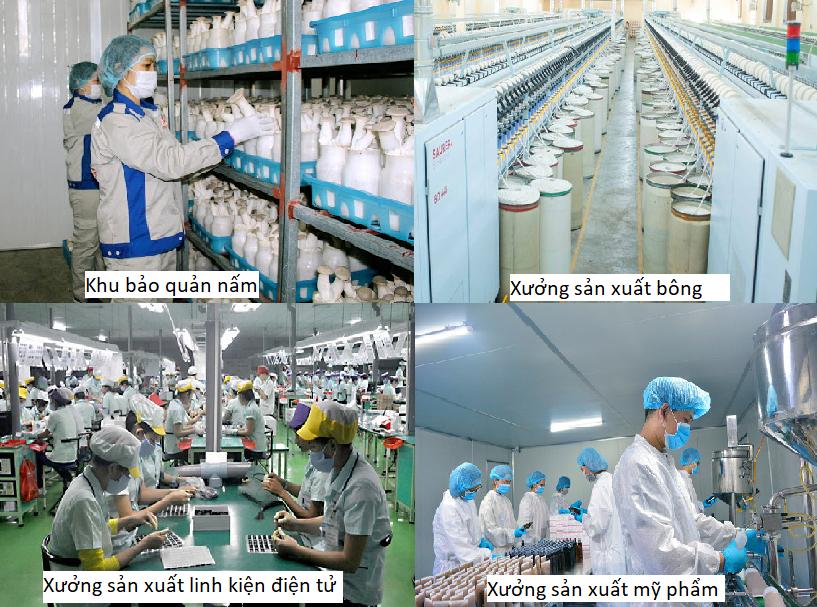 Các lĩnh vực sản xuất của nhà xưởng